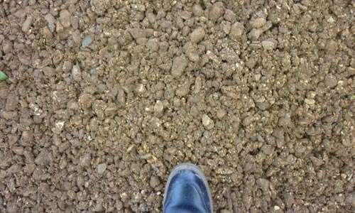 Path Gravel